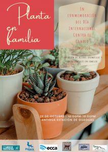 Planta en familia